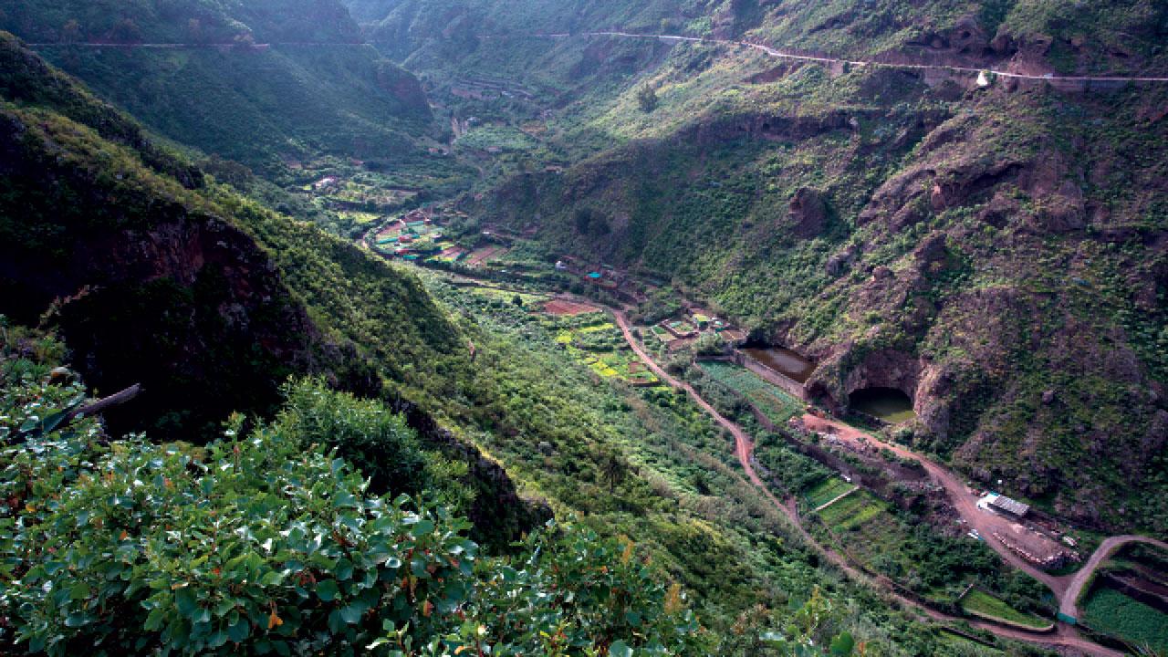 Schlucht von Azuaje, Firgas, Gran Canaria