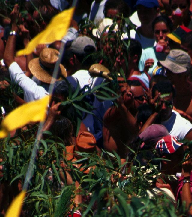 """Feier der """"Fiesta de la Rama"""" in Agaete, Gran Canaria"""