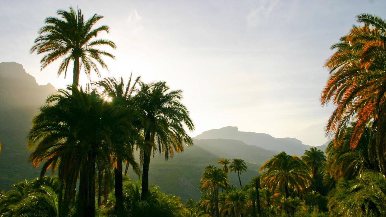 La Sorrueda, Santa Lucía