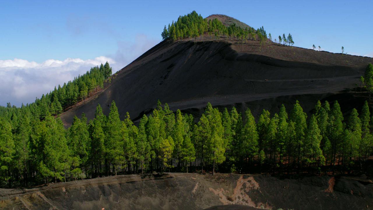 Montañón Negro