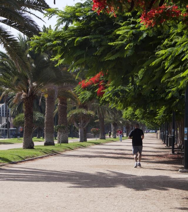 The Parque Romano in Las Palmas de Gran Canaria