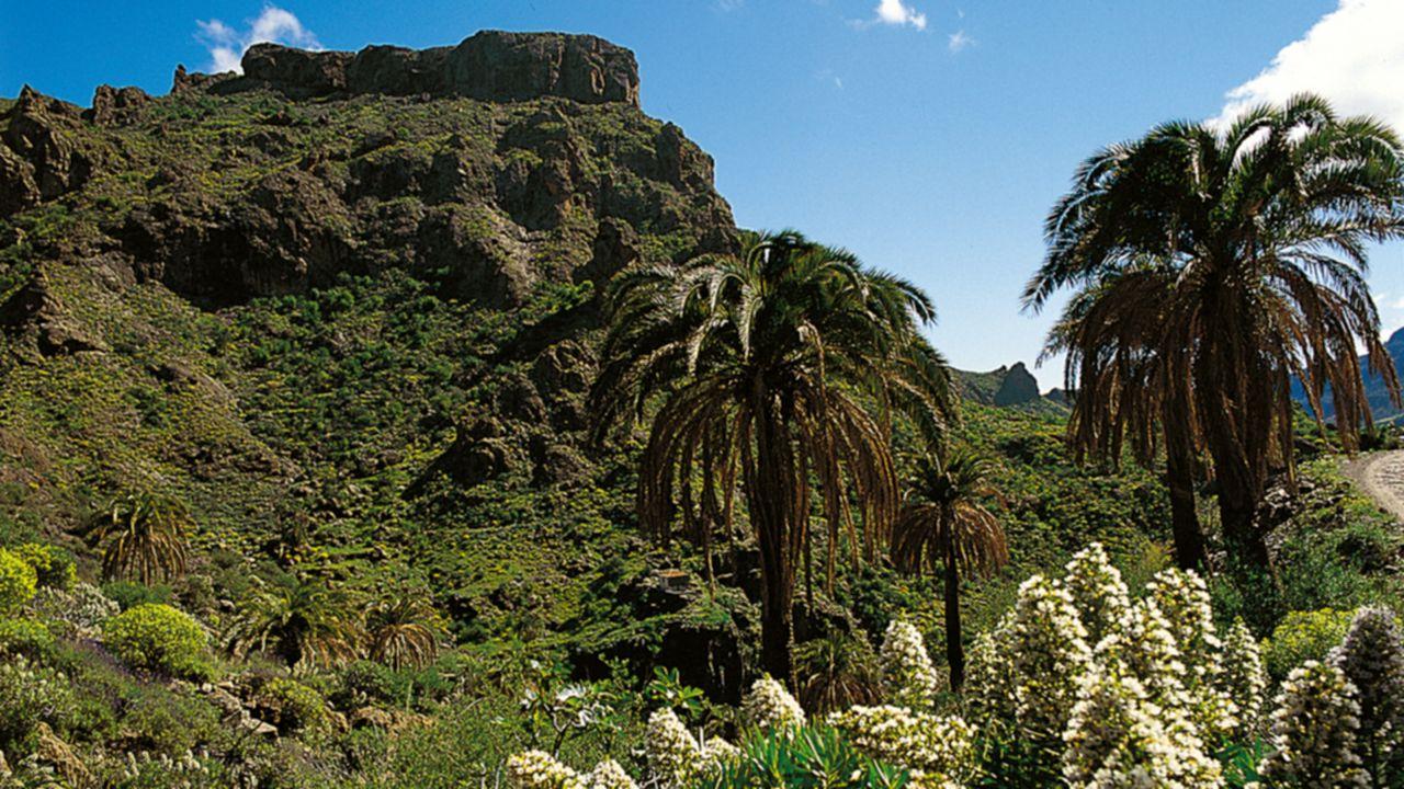 Reserva Natural Especial de Guguy