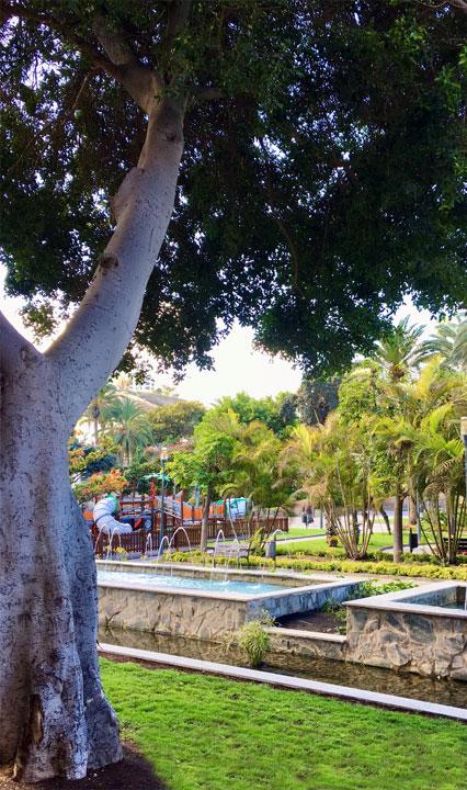 Parque Doramas