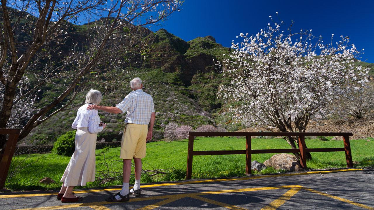 Una pareja disfruta del paisaje de almendros en flor en Gran Canaria