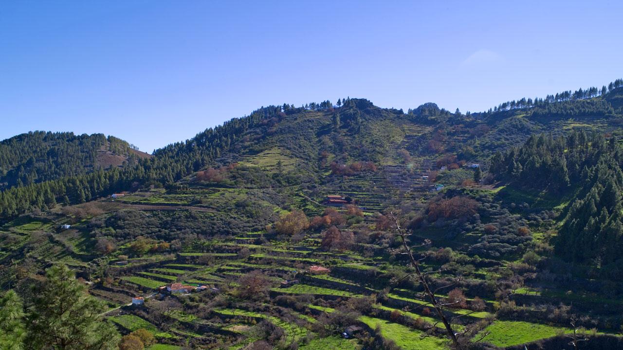 Las Lagunetas en Vega de San Mateo, en la isla de Gran Canaria