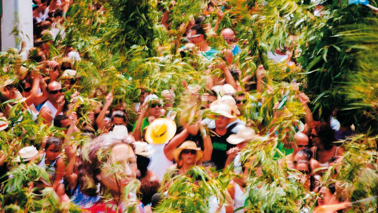 Celebración de la Fiesta de La Rama en Agaete, Gran Canaria