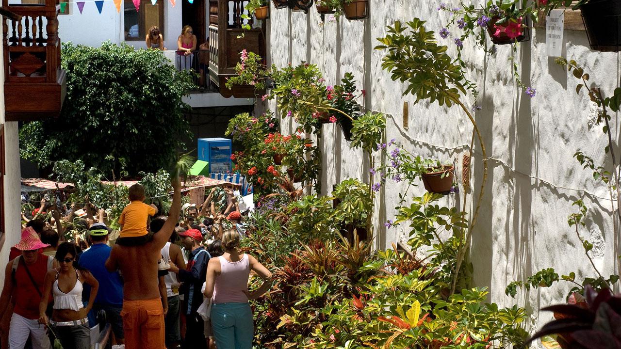 Celebración de la Bajada de La Rama en Agaete, Gran Canaria
