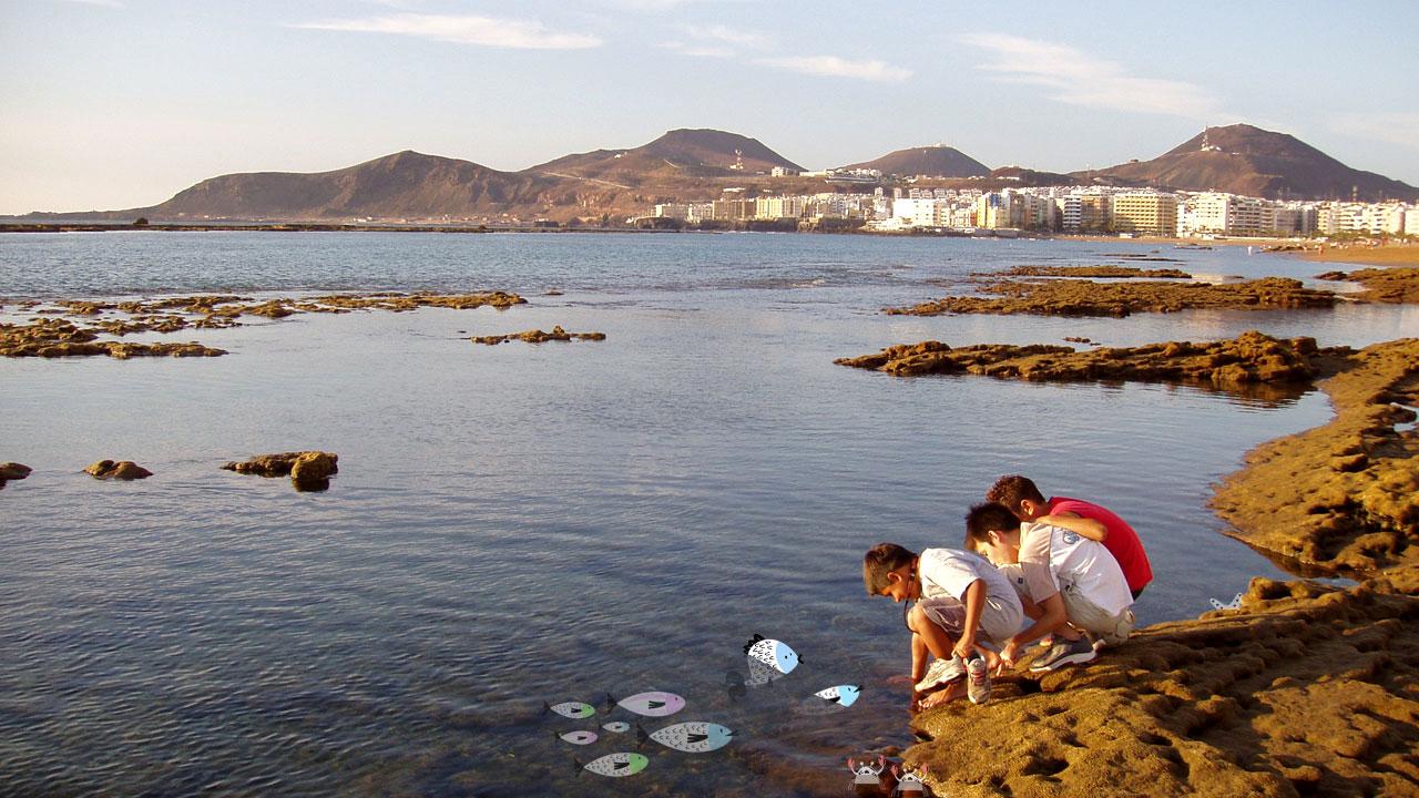 Un grupo de niños juega en los charcos de la Playa de Las Canteras en Gran Canaria