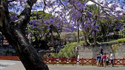 Doramas Garten, in der Stadt von Las Palmas de Gran Canaria