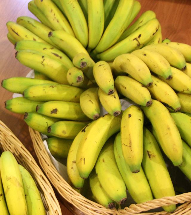 Manojos de Plátanos en una cesta