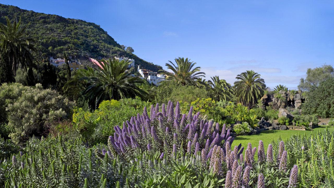 Jardín Botánico Viera y Clavijo (Jardín Canario), en Gran Canaria