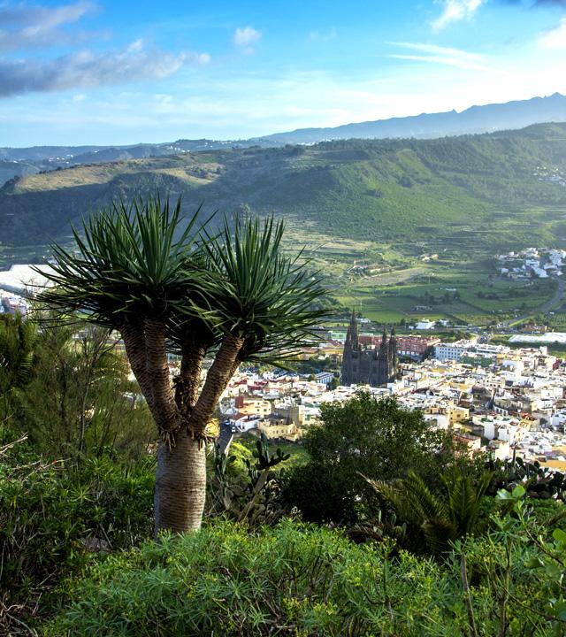 Panoramic views over Arucas