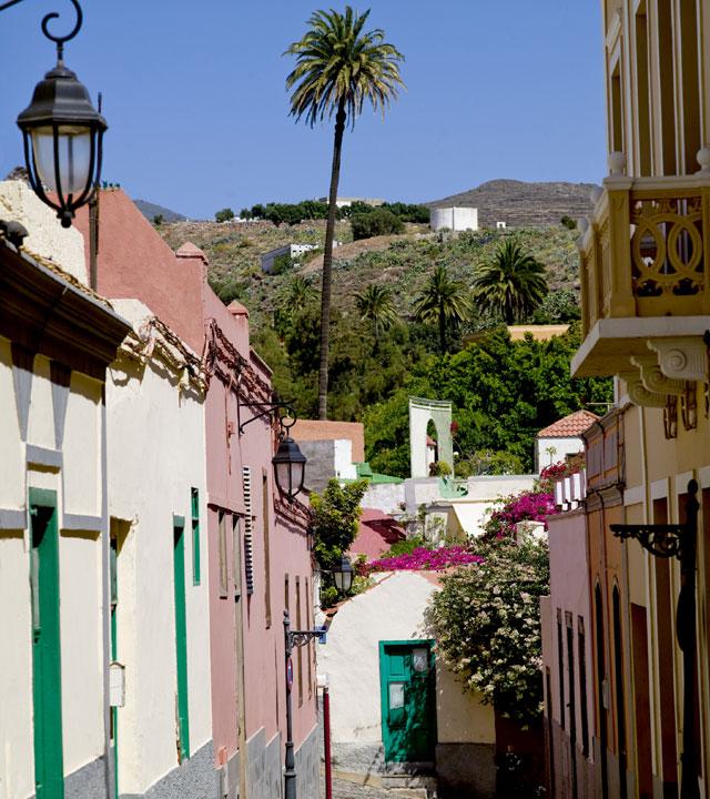 Rincón del municipio de Ingenio, en Gran Canaria