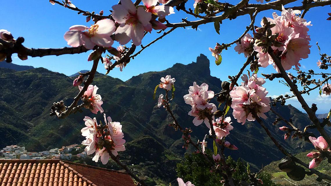 Roque Bentayga, Tejeda, Gran Canaria