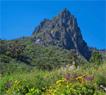 Gran Canaria en la naturaleza