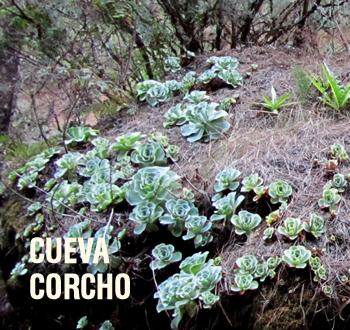 Cueva Corcho