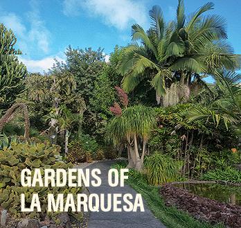 Gardens of La Marquesa