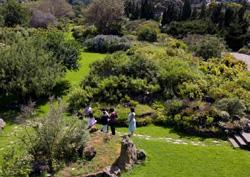 Ansicht des Botanischen Gartens