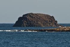 Roque de Gando