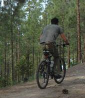 Praticando mountain bike em Tamadaba