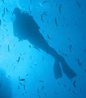 Mergulhador no mar de Gran Canaria