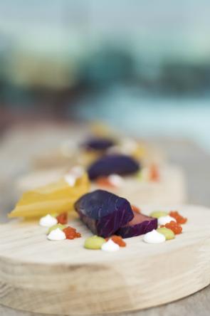 Salmón marinado en tuno indio, queso flor de guía, aguacate y crujiente de batata