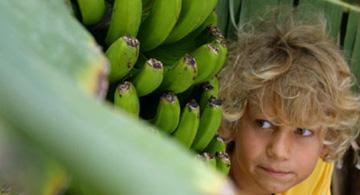 Junge hinter Bananenstauden