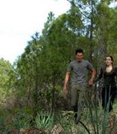Couple walking hand in hand in Tamadaba
