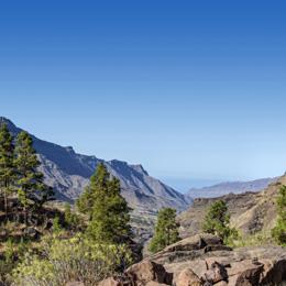 El Mulato Viewpoint