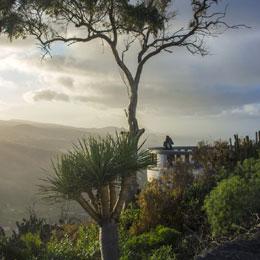 """""""La Marquesa de Arucas"""" Viewpoint"""